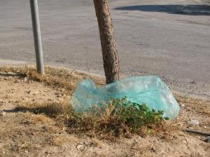 Ευτυχώς που υπάρχουν και κάποια δέντρα που λειτουργούν ως φρένο για τα σκουπίδια