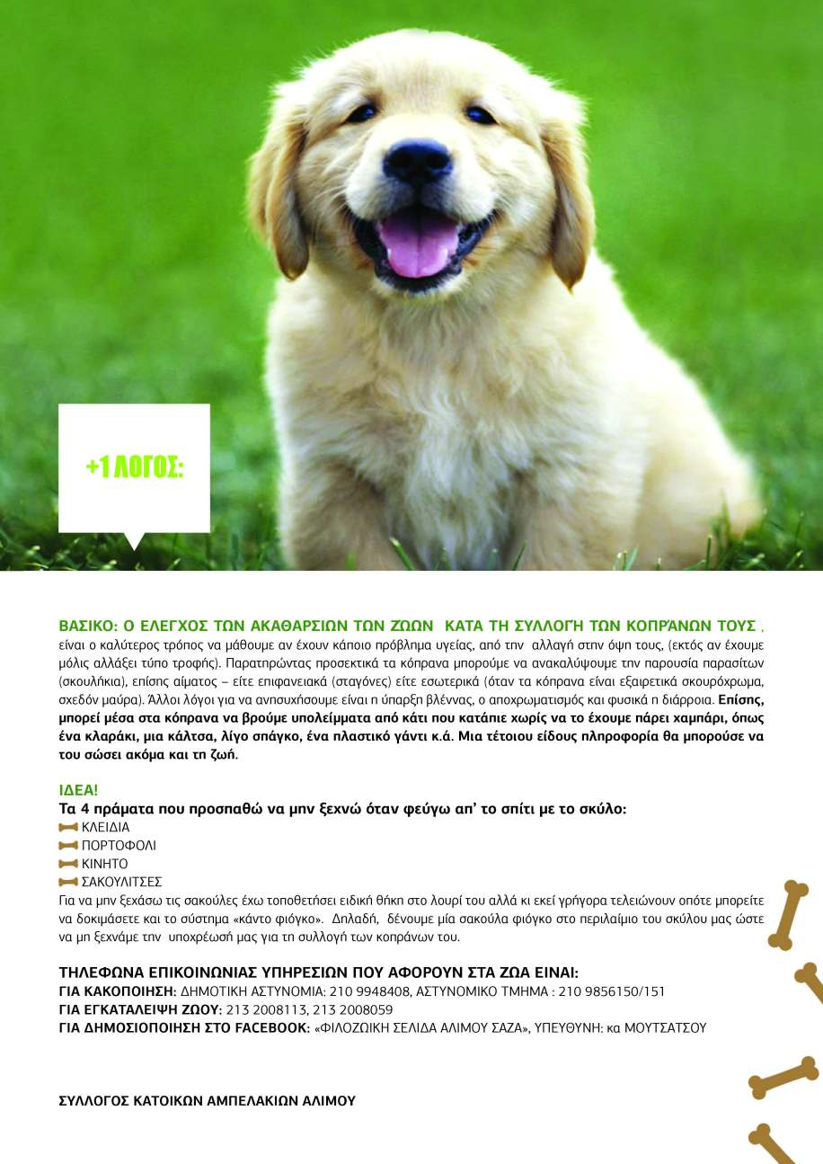 dogs_page_3